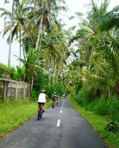 Cycling through the villages.