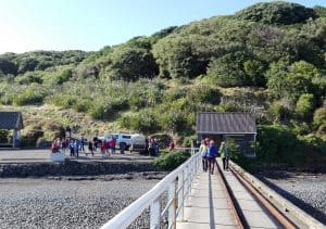 Arriving at Tiritiri Matangi.